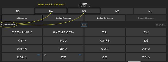 MultipleJLPTcram